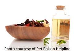 essential-oil-liquid-potpourri-poisoning
