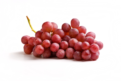 Grape Raisin And Currant Poisoning In Dogs Vca Animal Hospital