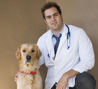 veterinary_visits_examinations_-_desensitization_reducing_fear_1