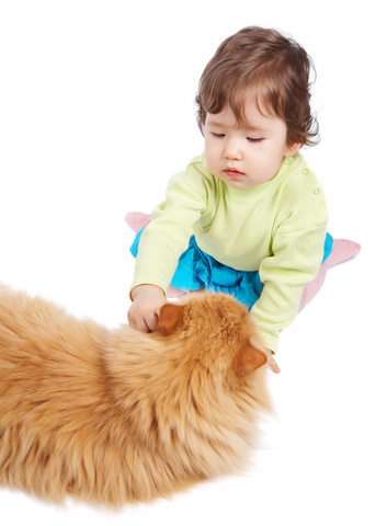 children_and_pets_3