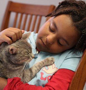 children_and_pets_cat