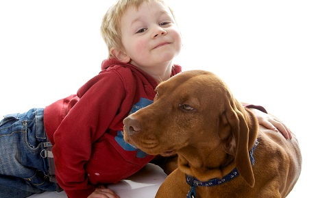 Dog Behavior Problems - Aggression - Children