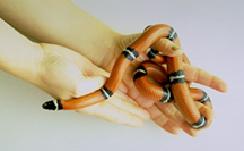 Snakes - Owning   VCA Animal Hospital