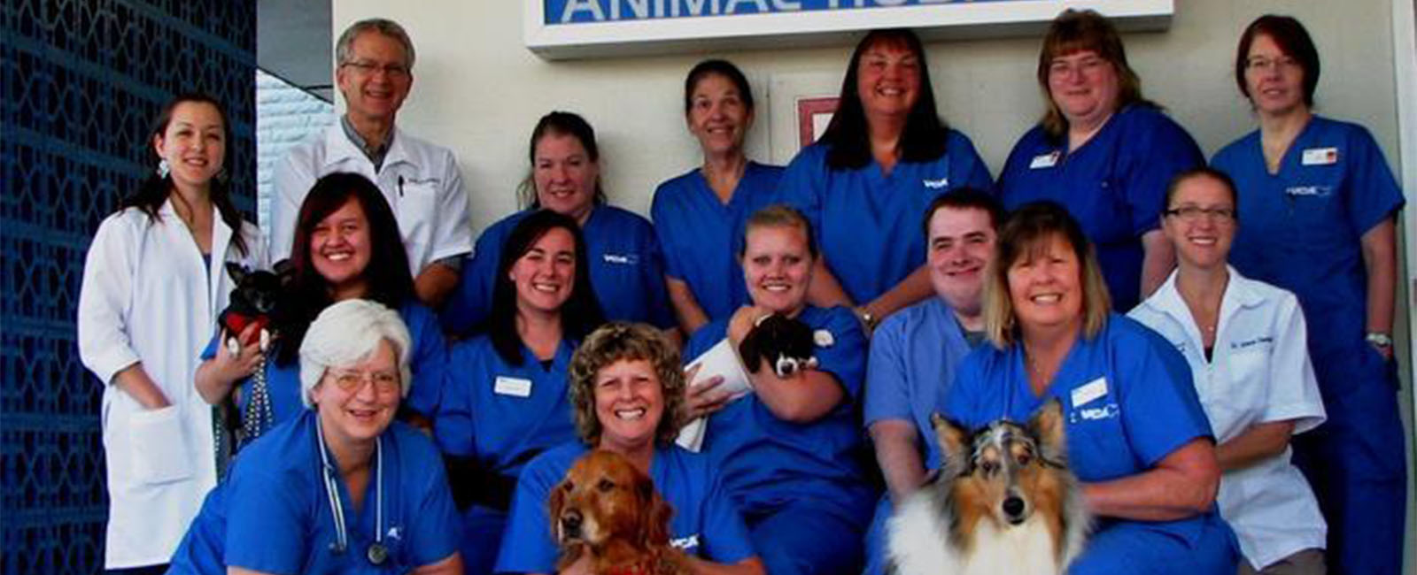 Homepage Team Picture of VCA 12-Mile Animal Hospital