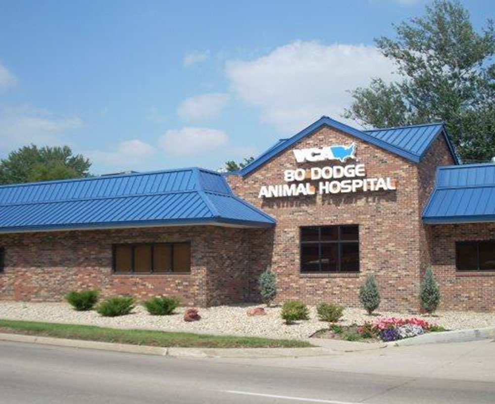 Hospital Picture of VCA 80 Dodge Animal Hospital