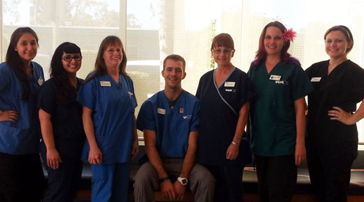 Homepage Team Picture of VCA Aacacia Animal Hospital