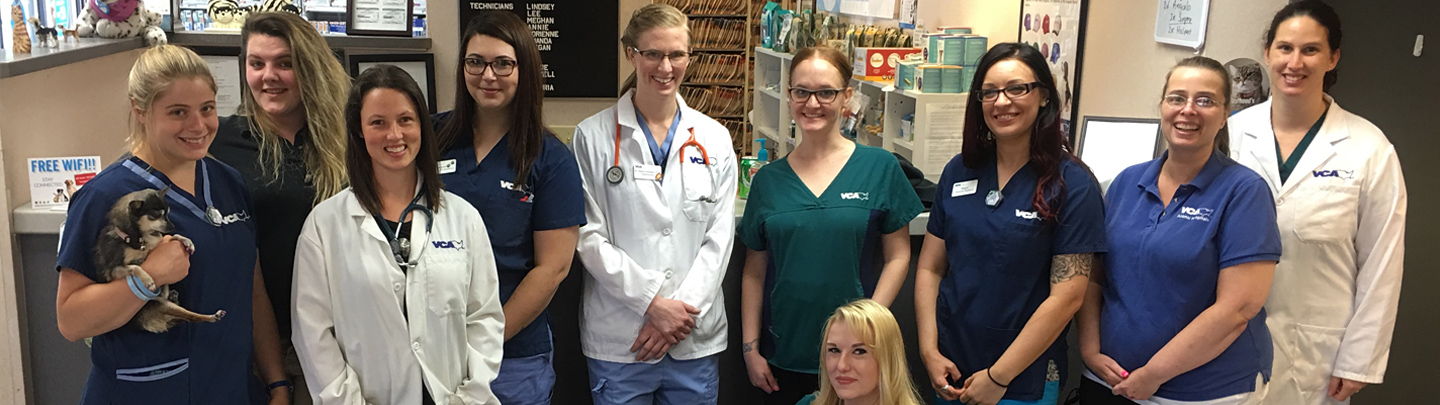 Team Picture of VCA Abbott Animal Hospital