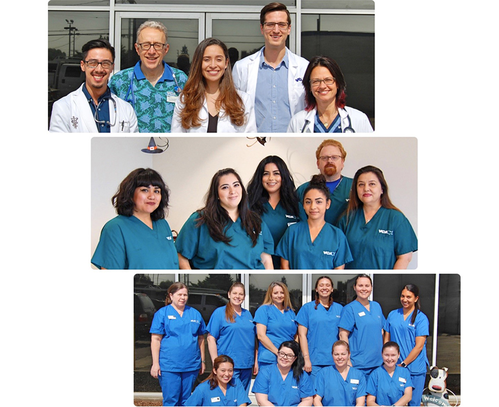 Hospital Team Picture of VCA Adler Animal Hospital