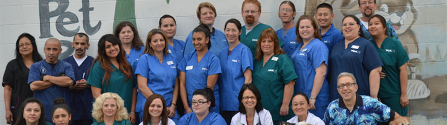 Team Picture of VCA Adler Animal Hospital