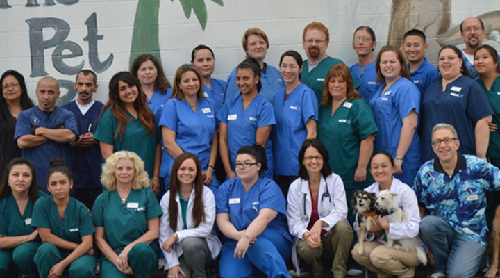 Homepage Team Picture of VCA Adler Animal Hospital