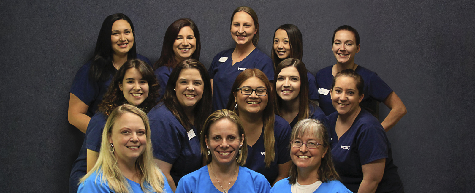 Team Picture of VCA Advanced Care Animal Hospital