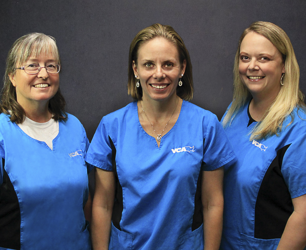 VCA Advanced Care Animal Hospital Veterinarians