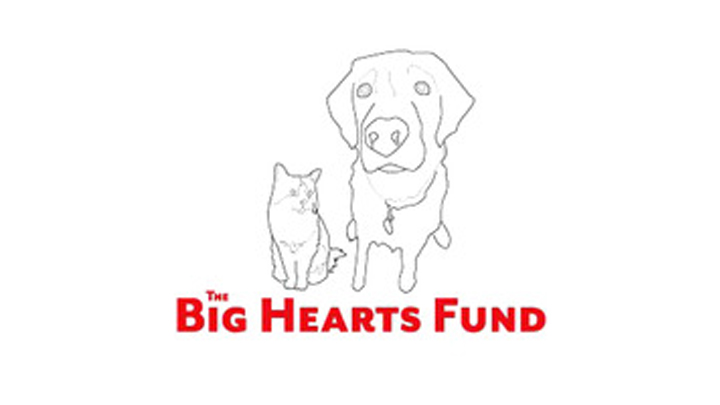 The Big Hearts Fund