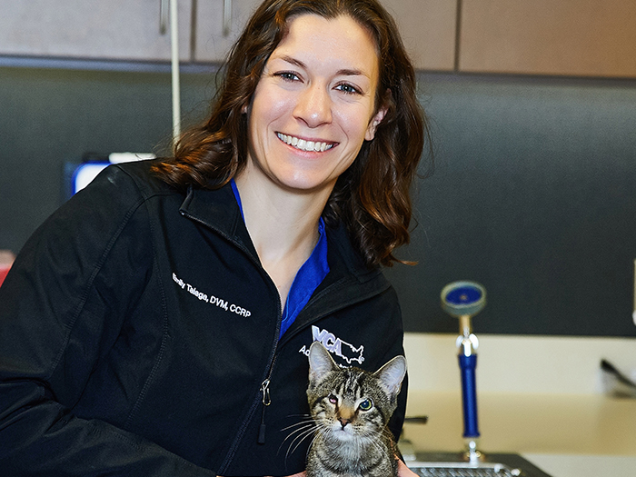 fishers vets at vca advanced veterinary care center
