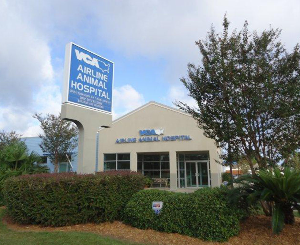 Hospital Picture of VCA Airline Animal Hospital
