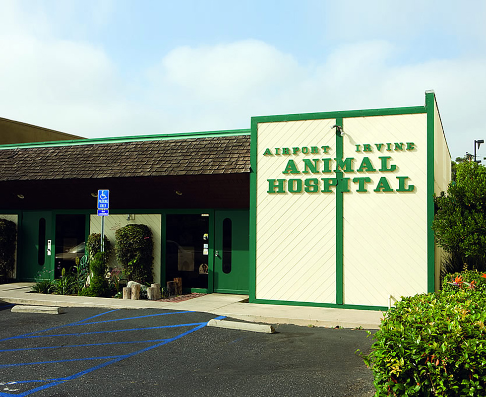 Hospital Picture of VCA Airport Irvine Animal Hospital