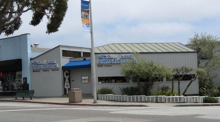 VCA Albany Animal Hospital
