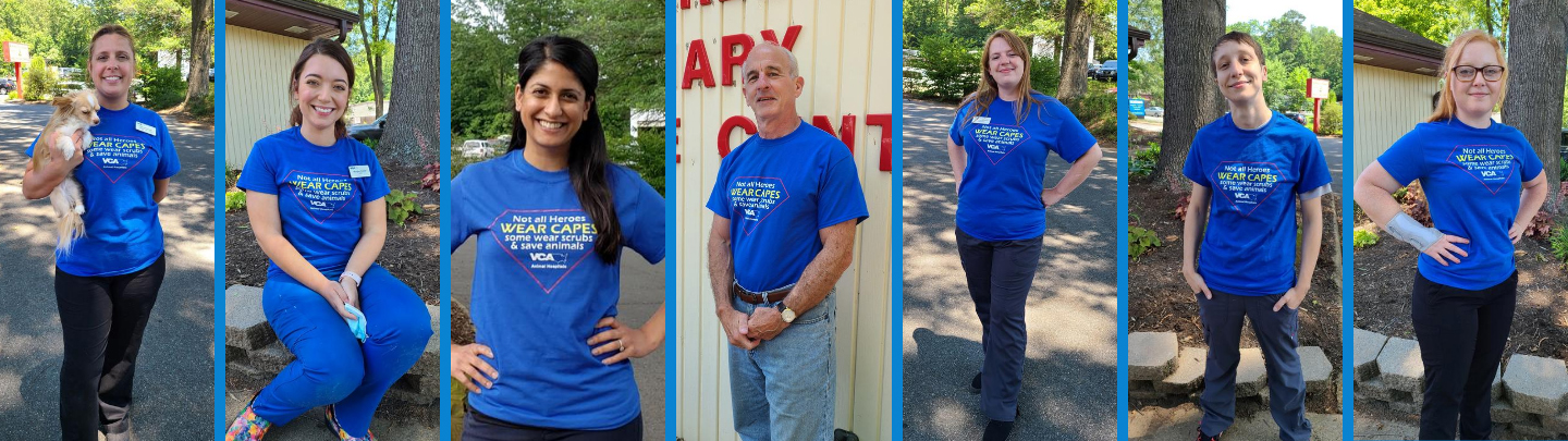 Team Photo of VCA Albemarle Veterinary Health Care Center