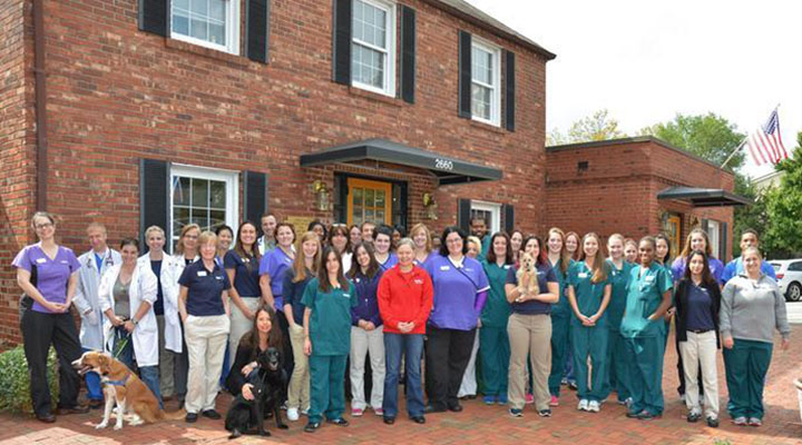 Homepage Team Picture of VCA Alexandria Animal Hospital