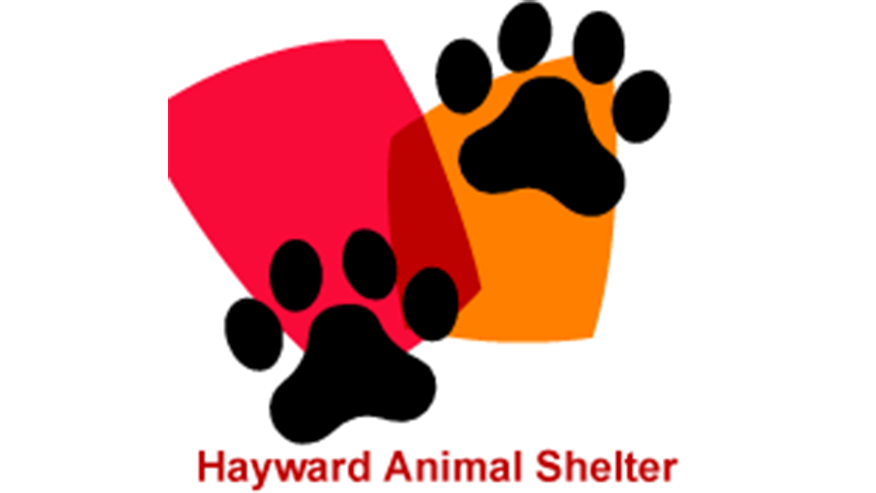 Hayward Animal Services