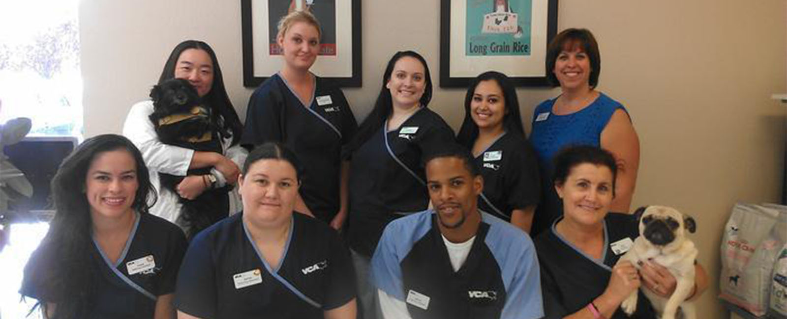 Homepage Team Picture of VCA All About Pets Animal Hospital
