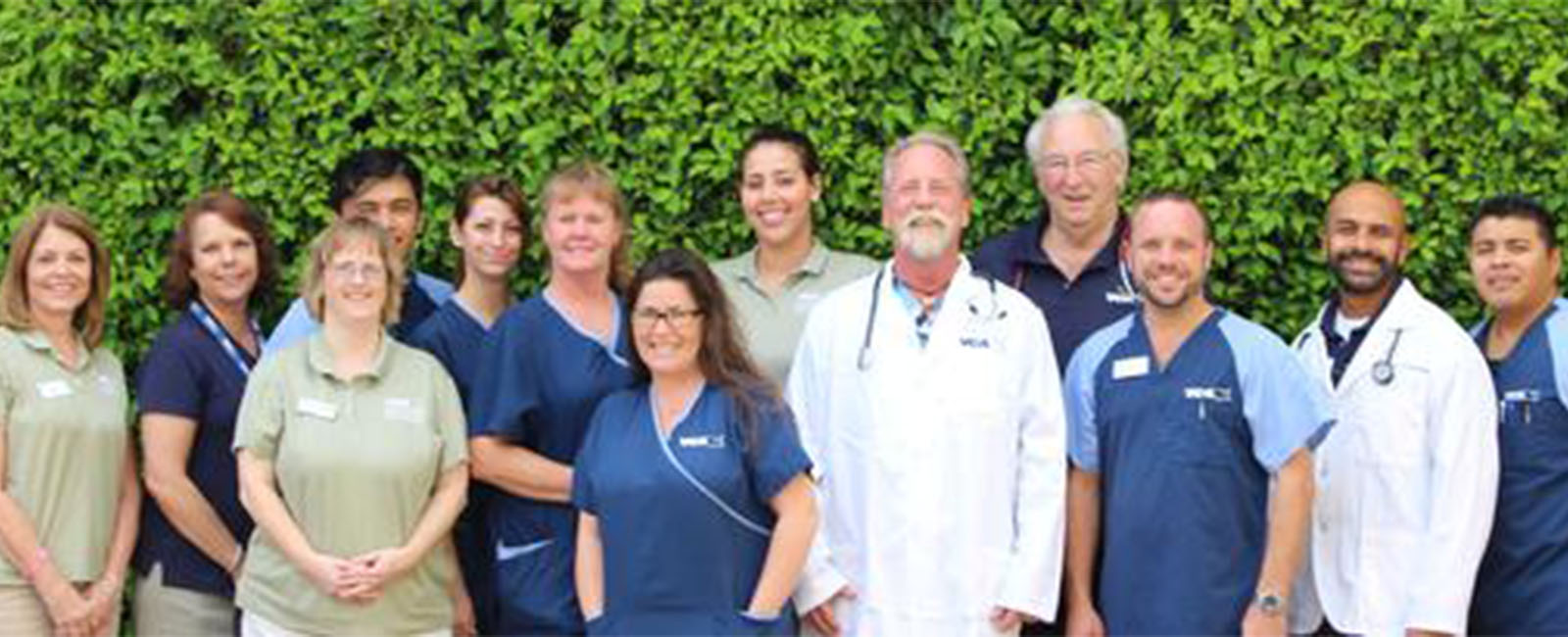 Homepage Team Picture of VCA All Creatures Animal Hospital