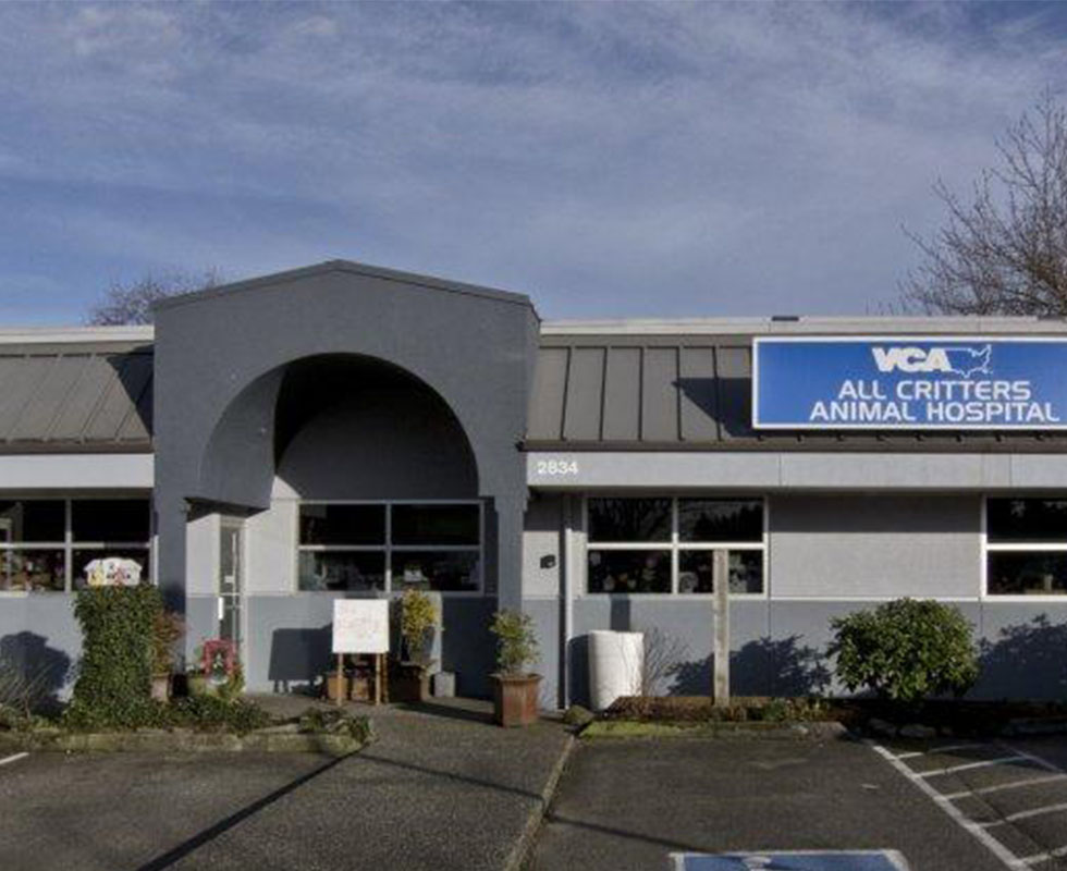 Hospital Picture of VCA All Critters Animal Hospital