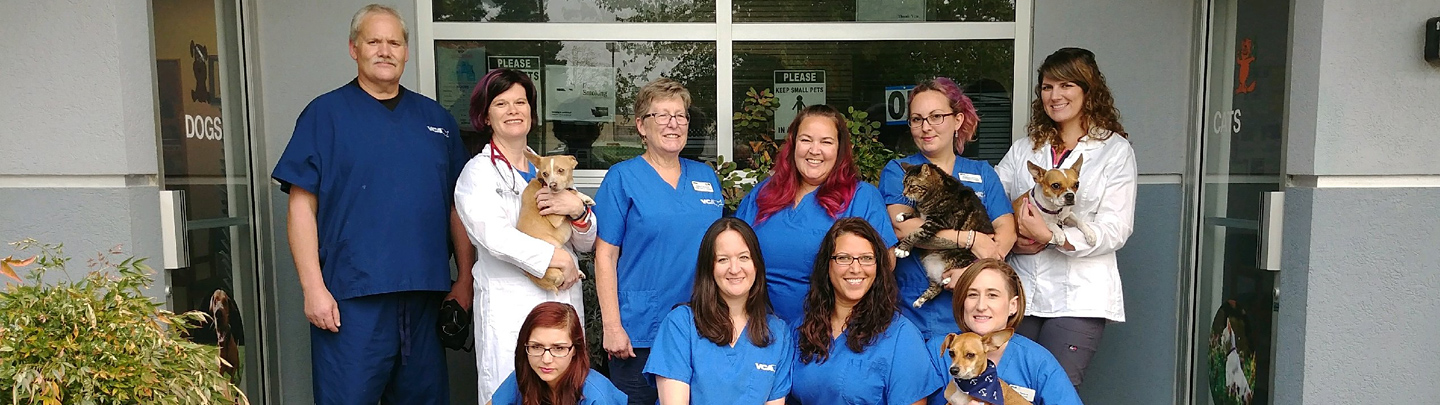 Team Picture of VCA All Critters Animal Hospital