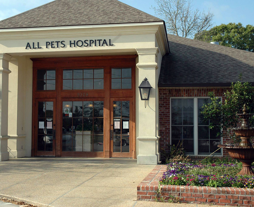VCA All Pets Animal Hospital