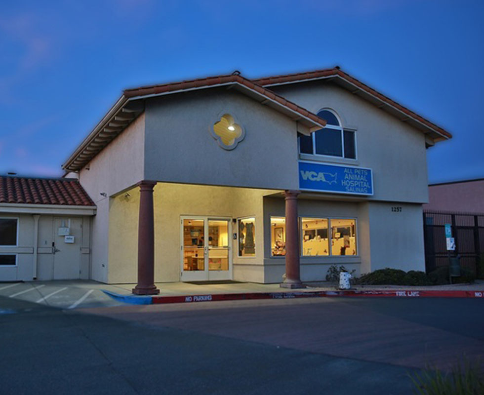 Hospital Picture of VCA All Pets Animal Hospital Salinas