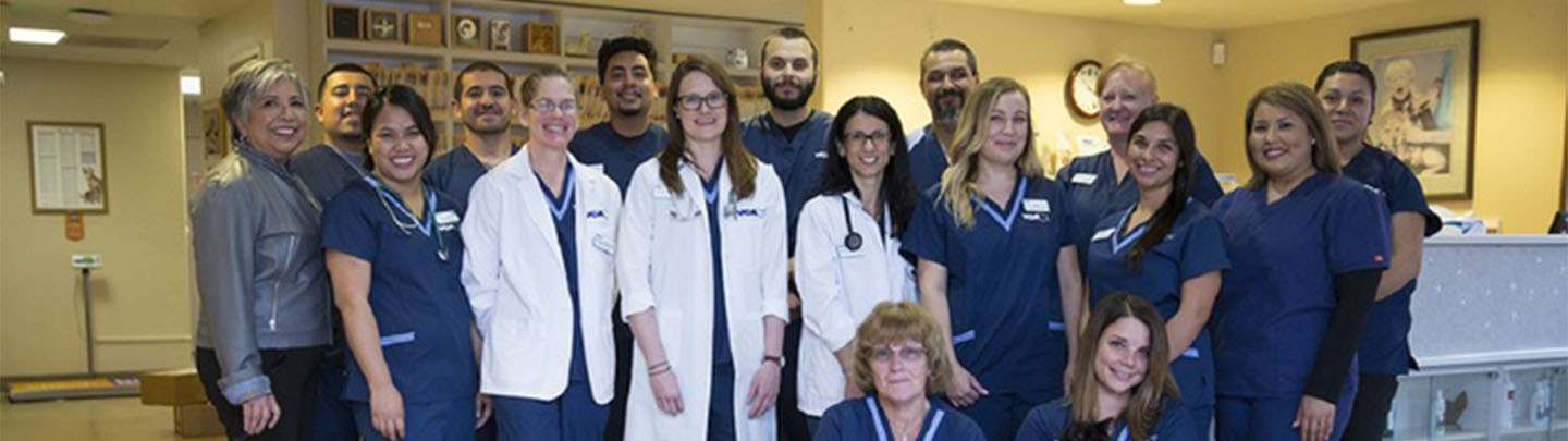 Team Picture of VCA All Pets Salinas Animal Hospital