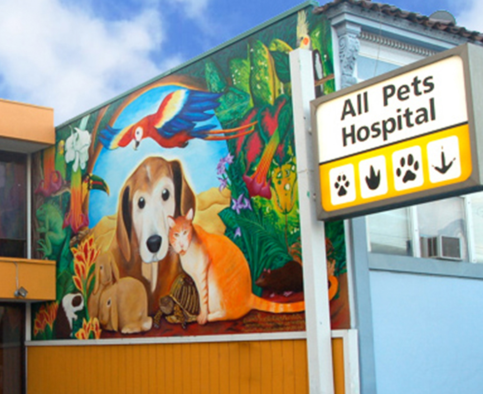 VCA All Pets Hospital San Francisco, CA building photo
