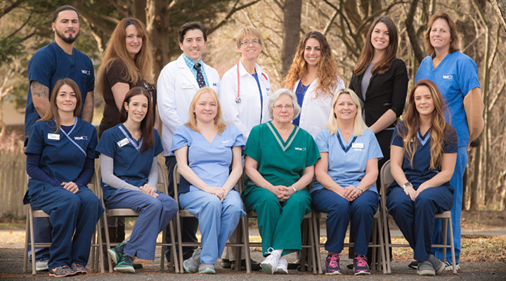 Homepage Team Picture of VCA Allenwood Animal Hospital