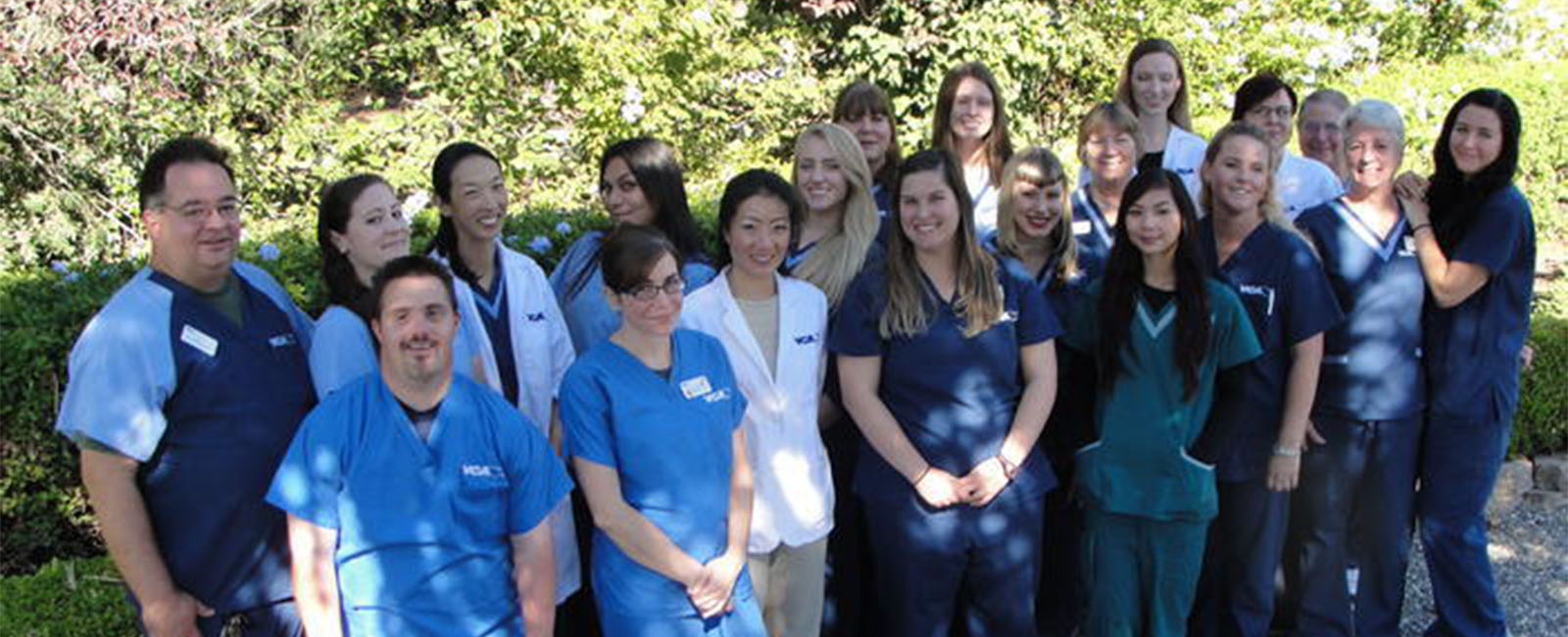 Homepage Team Picture of VCA Almaden Valley Animal Hospital