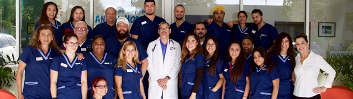 Team Picture of VCA Alton Road Animal Hospital