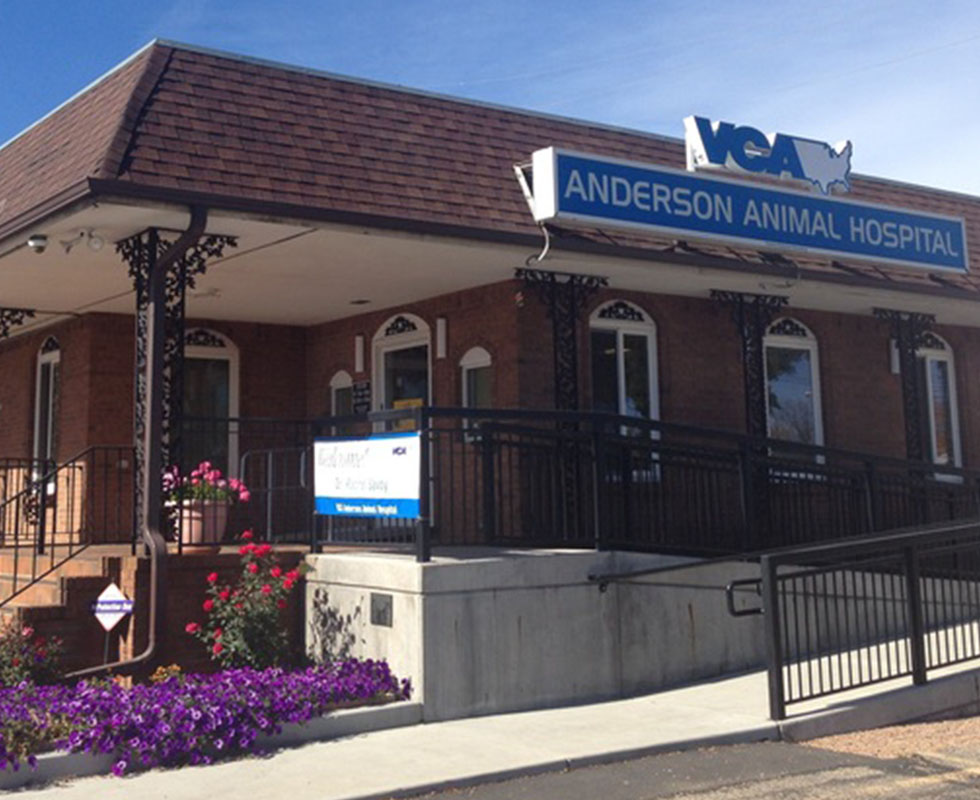 Hospital Picture of VCA Anderson Animal Hospital