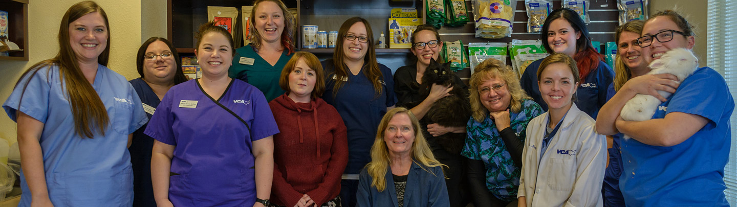 Team Picture of VCA Anderson Animal Hospital