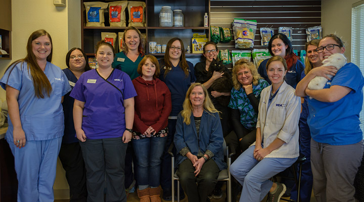 Homepage Team Picture of VCA Anderson Animal Hospital