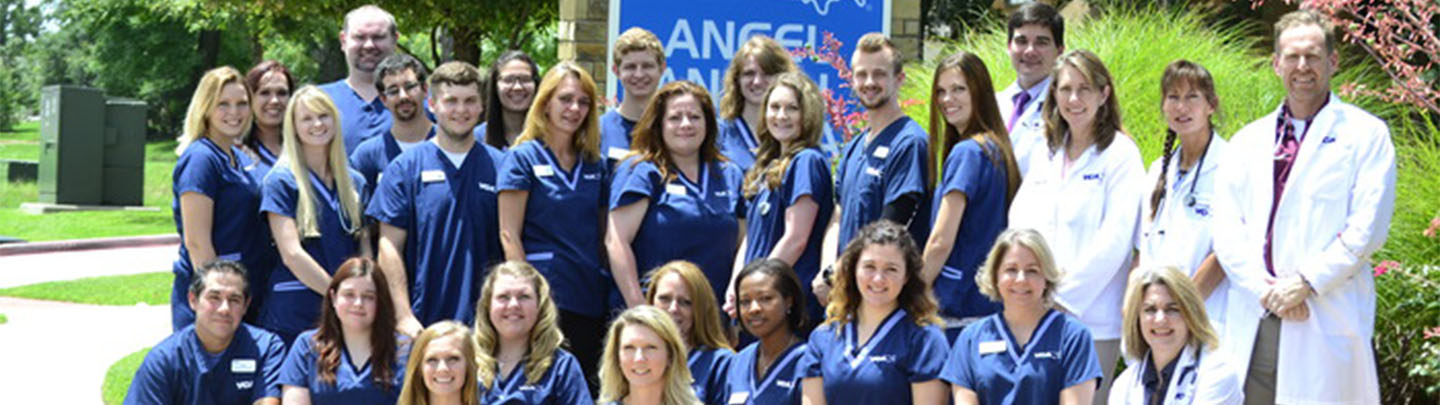 Team Picture of VCA Angel Animal Hospital