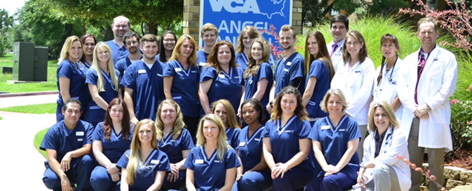 Homepage Team Picture of VCA Angel Animal Hospital