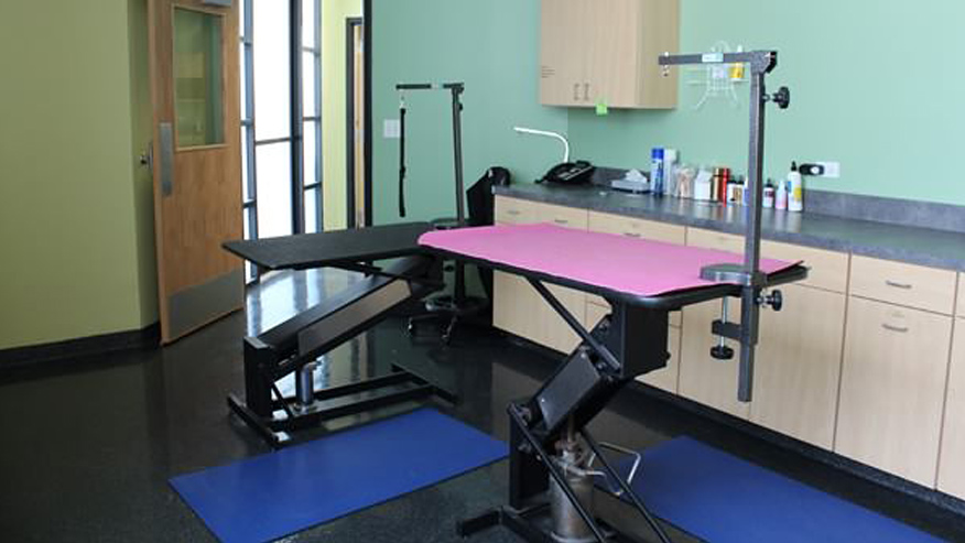 VCA Animal Care Center Chicago Grooming