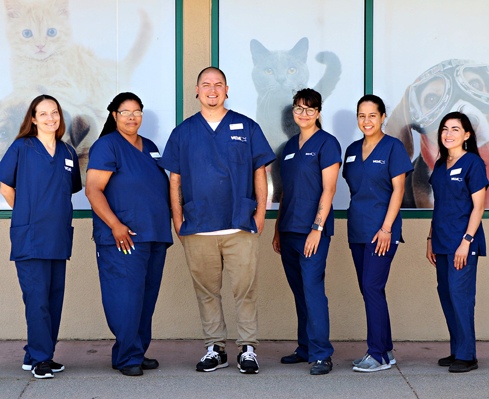 Boarding Staff at VCA Animal Care Clinic