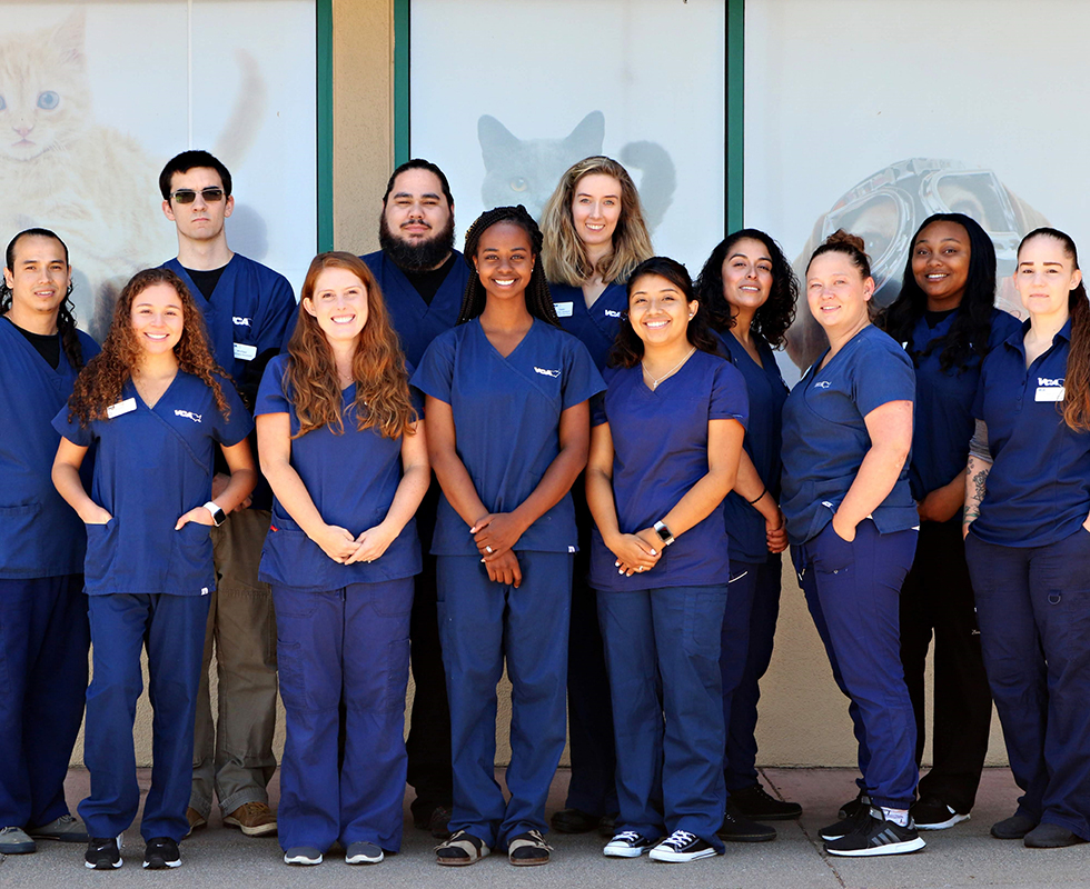 VCA Animal Care Clinic Veterinary Support Staff