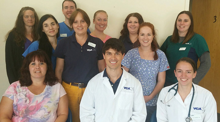 Homepage Team Picture of VCA Animal Care Hospital