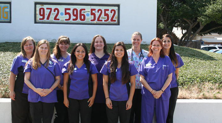 Veterinarians in Plano, TX | VCA Animal Care Hospital