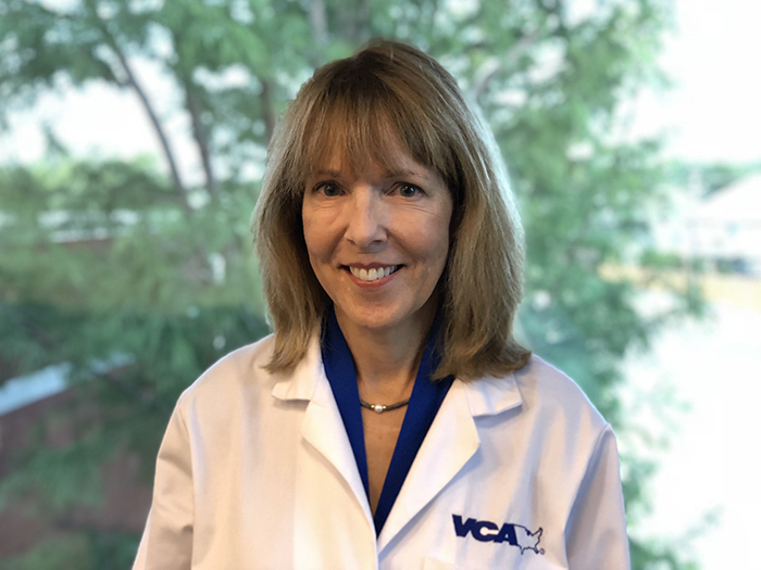 Carrie B. Waters DVM