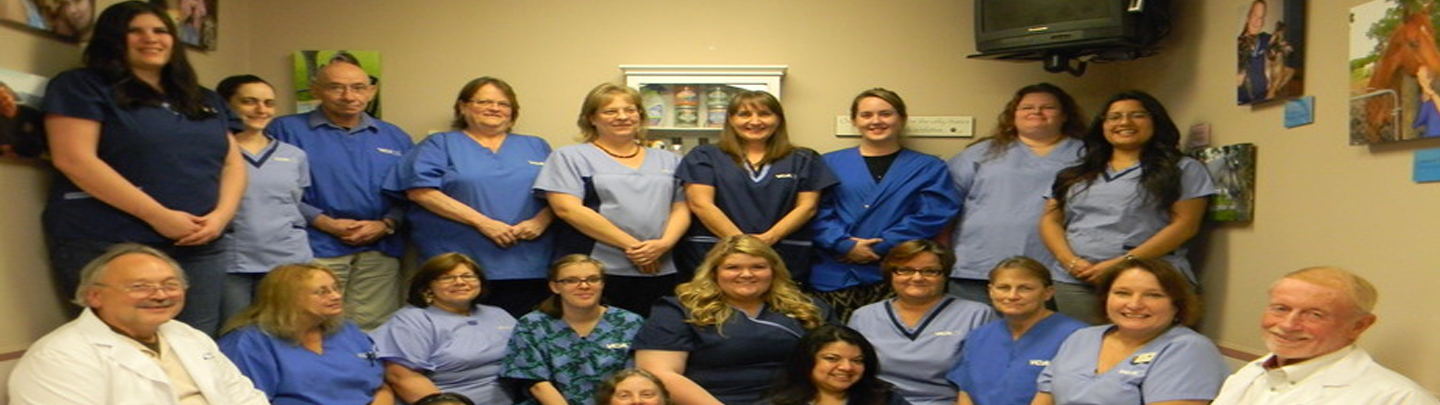 Team Picture of VCA Animal Emergency Southeast Animal Hospital