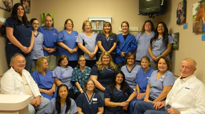 Homepage Team Picture of VCA Animal Emergency Southeast Hospital