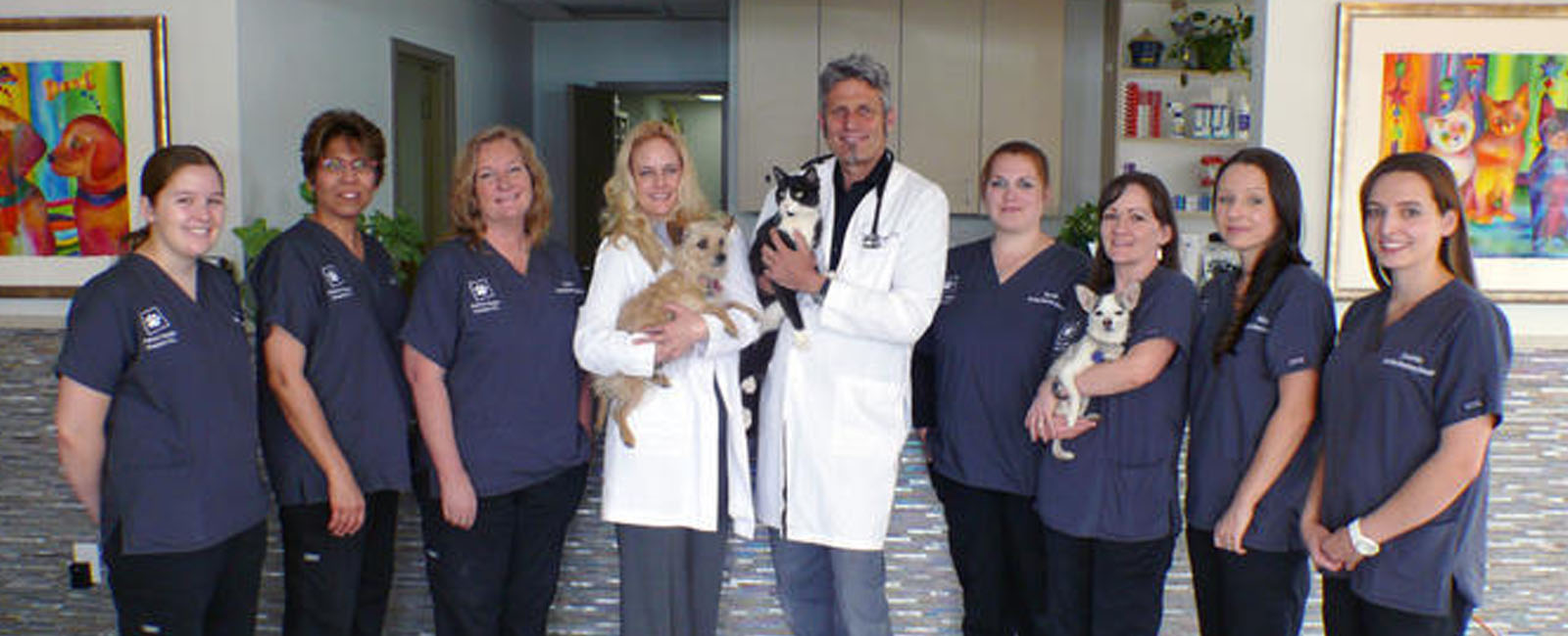 Homepage Team Picture of VCA Animal Health Animal Hospital
