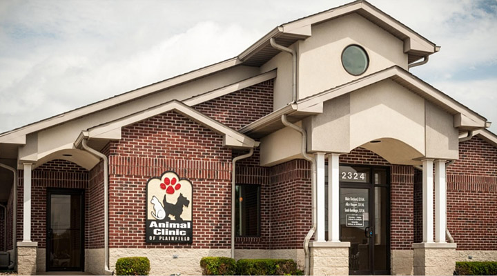Homepage Hospital Picture of VCA Animal Hospital of Plainfield